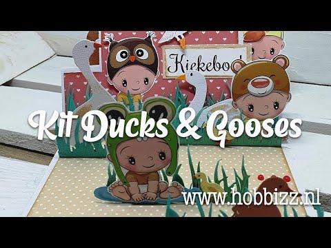 Kit Ducks & Gooses