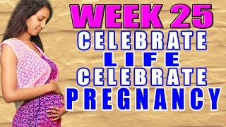 Pregnancy Information - Week 25 (CLCP) Thumbnail