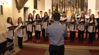 Zbor Allegro - Pod kopinom