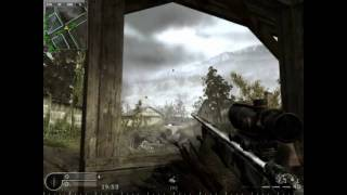 CoD4Test2 - Overgrown shot :D
