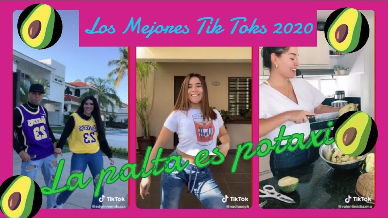 """LOS MEJORES TIK TOKS de """"La Palta  es Potaxio"""" 😂😂🔊🎵"""