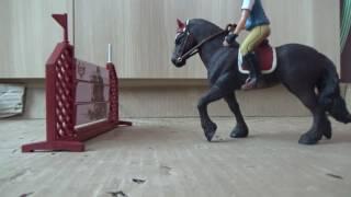 Co si asi myslí koně/Arina11