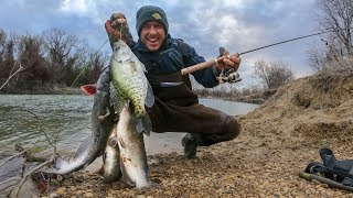 Ultra Light Tackle River Fishing | CATFISH & CRAPPIE!?