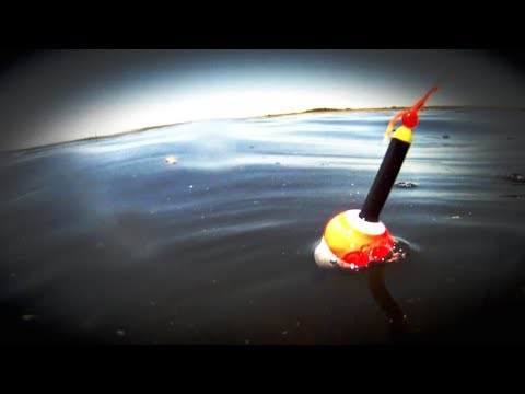 Choosing The Right Bobber For Panfish