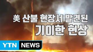 """[자막뉴스] """"괴물"""" 美 산불 현장서 발견된 기이한 현상 / YTN"""