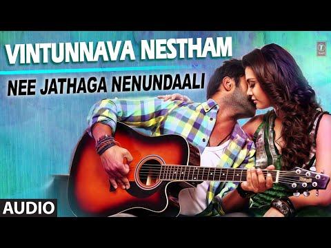 Vintunnava Nestham Song - Ankit Tiwari - Nee Jathaga Nenundaali (Telugu Movie)