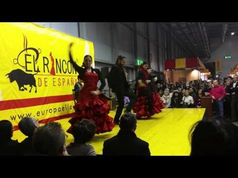 Flamenco 01 en Italia