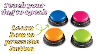 Teach your dog to 'TALK' using buttons   First Step: TEACH DOG TO PRESS BUTTON