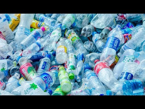 Plastic-eating enzyme could fight pollution