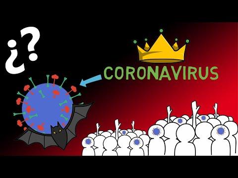 Qué Es El Coronavirus Y Qué Síntomas Causa El Coronavirus