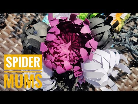 Paper Spider mums   DIY Spider mums tutorial   Paper flower tutorial   Paper Daisy
