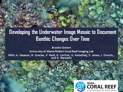 Underwater Imagery/ Documenting Benthic Changes - Brooke Gintert