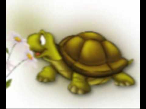 La lepre e la tartaruga di esopo efisio youtube - Pagine di colorazione tartaruga ...