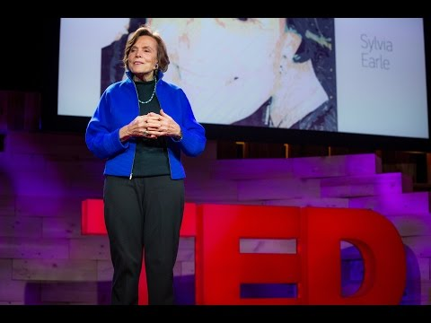 Taking care of the ocean | Sylvia Earle