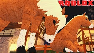 PONY LIFE Puppy! THE STORY OF DADDY AND HIS CUB! -ROBLOX Farm World | * For Children * 🐴