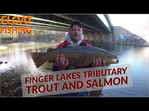 Finger Lakes Tributary Float Fishing For Landlocked Salmon, Brown Trout And Rainbow Trout