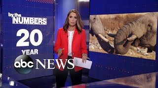 By the numbers: Ivory trade led to 'rapid evolution' of tuskless elephants