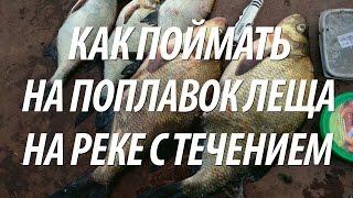 КАК ЛОВИТЬ ЛЕЩА НА СИЛЬНОМ ТЕЧЕНИИ БОЛОНСКОЙ ПОПЛАВОЧНОЙ УДОЧКОЙ(Как ловить леща с берега болонской поплавочной удочкой на сильном течении. Советы рыбакам как для рыбалки..., 2016-09-18T06:00:01.000Z)