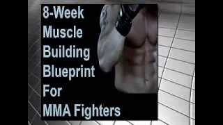 Workout Plans - Mixed Martial Arts