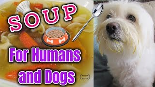 Soup for HUMANS and DOGS, Healthy soup I Lorentix