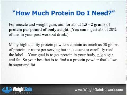 How Much Protein After Workout? Revealed! - YouTube