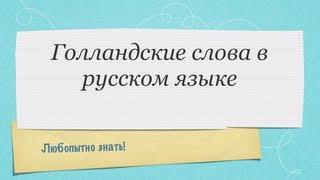 Голландские слова в русском языке
