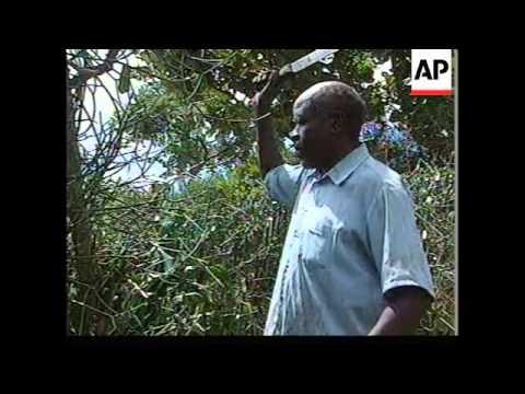 UGANDA: DOOMSDAY CULT TRAGEDY: MEMORIAL (V)