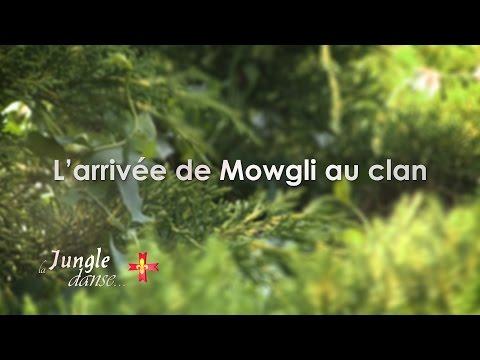 La Jungle Danse  L'arrivée de Mowgli au clan