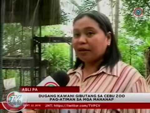 TV Patrol Central Visayas - Sep 22, 2016