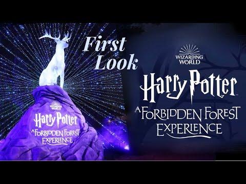 FIRST LOOK - Harry Potter Forbidden Forest Experience Victoria Maclean #HPForbiddenForestExperiance
