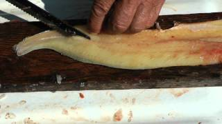 Almost Viral Northern pike bone removal fillet. Best ever instructional video on deboning fish.