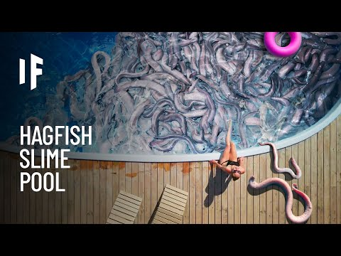 What If You Fell Into A Pool Of Hagfish?