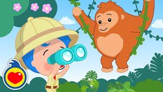El Orangután - Homenaje al Gran Chico Novarro ♫ Plim Plim ♫ Canciones Infantiles