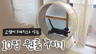 ENG) 캣폴부터 캣휠까지!? 고양이3마리와 사는 10평 원룸 꾸미기🏠 원목 셀프 인테리어