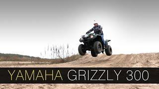 Квадроцикл Yamaha Grizzly 300 - DDrive E12 - тест-драйв(Обычно, вступление к тестам в этой рубрике начинаются так: