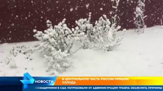 В Москве в жилые дома возвращают отопление после аномального похолодания