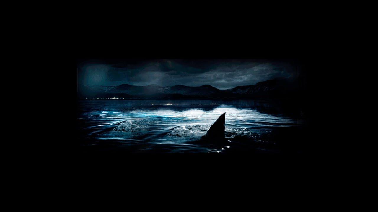 Download Shark Lake - Official Trailer