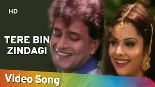 Tere Bin Zindagi (HD) | Heeralal Pannalal (1999) | Mithun Chakraborty | Bollywood Romantic Song