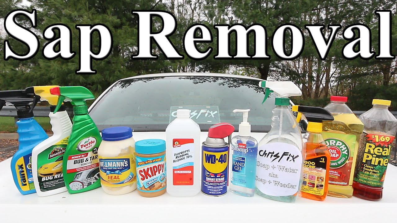 How To Get Pine Sap Off Your Car