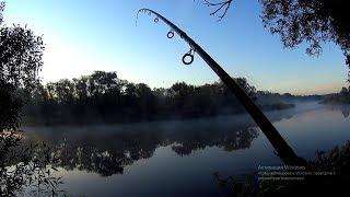 Удачно я попал!! Рыбалка туманым утром!Рыбалка на фидер.