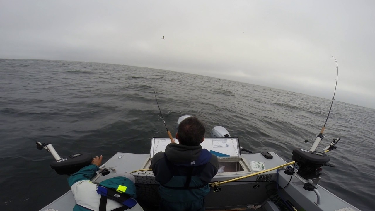 Half moon bay salmon fishing 7 28 17 get 9 ber youtube for California out of state fishing license
