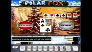 видео Игровой 777 автомат Песец играйте бесплатно в казино Вулкан