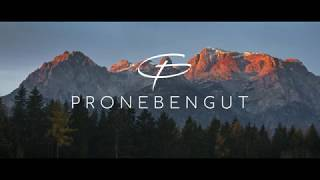PRONEBEN - DIRECTORS CUT