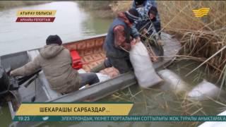 Каспий теңізінде броконьерлермен пәрменді күрес жүріп жатыр