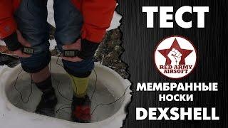 Тест. Мембранные носки DexShell, тазик с ледяной водой, датчики температуры и мат на весь лес.