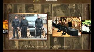 Рекламный ролик охранного предприятия