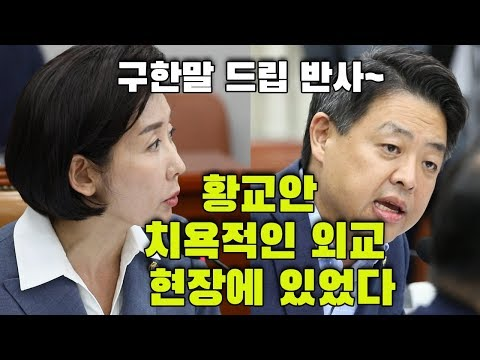 나경원 구한말 드립을 황교안에 반사한 김영호 의원
