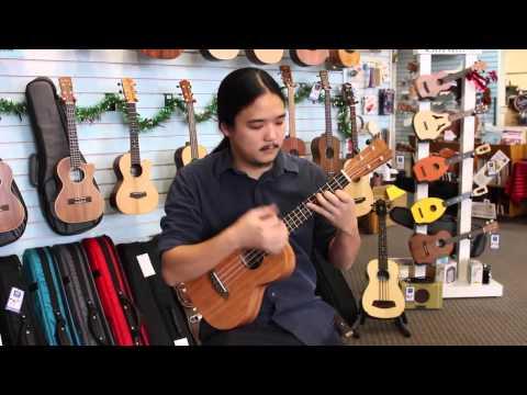 Islander MT-4 - Pacific Winds Music