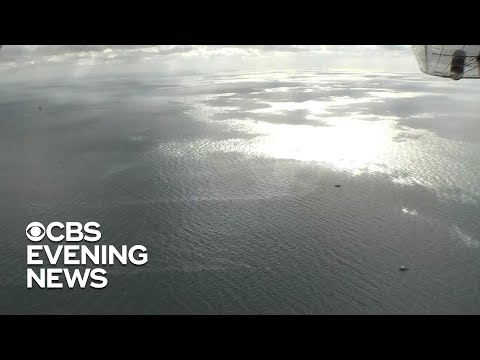 Oil spill still leaking into the Gulf of Mexico 15 years later