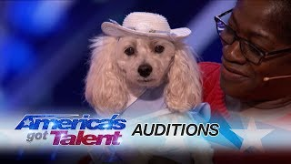 Mia Moore: Counting Canine's Act Adds Up for the Judges - America's Got Talent 2017